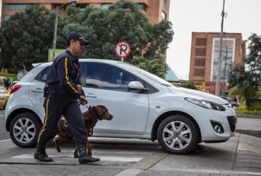Servicios-seguridad-canina-manejador-canino